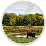 Peaceful Pastures Round Beach Towel