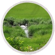 Peaceful Reflection Round Beach Towel