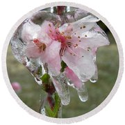 Peach Blossom In Ice Round Beach Towel