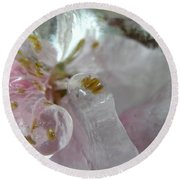 Peach Blossom In Ice Three Round Beach Towel