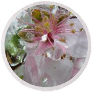 Peach Blossom In Ice Two Round Beach Towel
