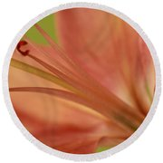 Peach Lily 1 Round Beach Towel