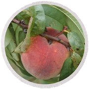 Peach For Harvest   # Round Beach Towel