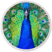 Peacock 1 Round Beach Towel