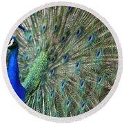 Peacock 21 Round Beach Towel