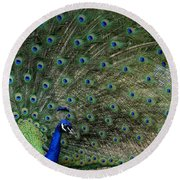 Peacock 8 Round Beach Towel