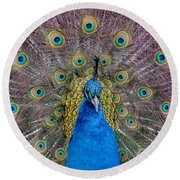 Peacock And Proud Plumage Round Beach Towel