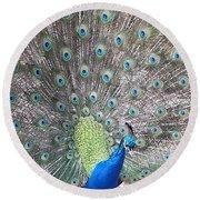 Peacock Bow Round Beach Towel