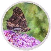 Peacock Butterfly Inachis Io On Buddleja Round Beach Towel