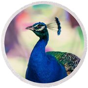 Peacock I. Bird Of Paradise Round Beach Towel