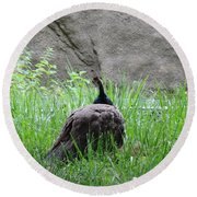 Peacock In The Grass Round Beach Towel