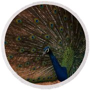 Peacock Show Off Round Beach Towel