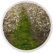 Pear Blossom Lane Round Beach Towel