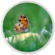 Pearl Crescent Butterfly Square Grass Round Beach Towel
