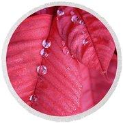 Pearls On Poinsettia Round Beach Towel