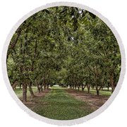 Pecan Orchard Sahuarita Arizona Round Beach Towel