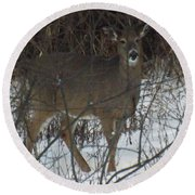 Peek A Boo Deer Round Beach Towel
