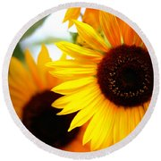 Peekaboo Sunflowers Round Beach Towel