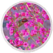 Peeking Through The Pink Penstemons Round Beach Towel