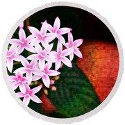 Pelargonium Graveolens II Round Beach Towel