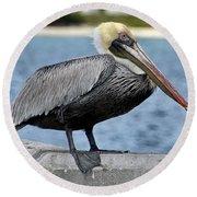 Pelican 2 Round Beach Towel