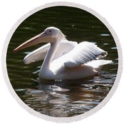 Pelican And Friend Round Beach Towel