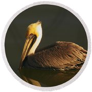 Pelican At Dark Round Beach Towel