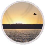 Pelican At Sunset Round Beach Towel
