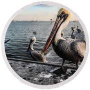 Pelican At The Pier Round Beach Towel