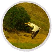 Pelican Buzz By Round Beach Towel