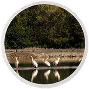 Pelican Clean Up Time Round Beach Towel