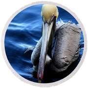 Pelican In The Bay Round Beach Towel