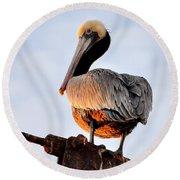 Pelican Looking Back Round Beach Towel