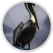 Pelican On Dock Round Beach Towel