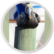 Pelican On Piling Round Beach Towel