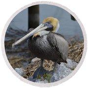 Pelican On Rocks Round Beach Towel