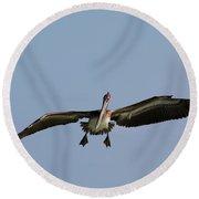 Pelican Prepare For Landing Round Beach Towel