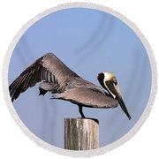 Pelican Stretch Round Beach Towel