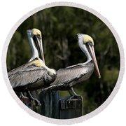 Pelican Threesome Round Beach Towel