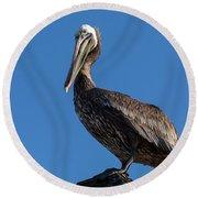 Pelican Watch Round Beach Towel