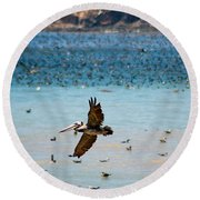 Pelicans Flocking On The Ocean Round Beach Towel