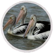 Pelicans In Australia 3 Round Beach Towel