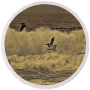 Pelicans In The Surf Round Beach Towel