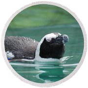 Penguin Gliding On Water's Surface Round Beach Towel
