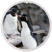 Penguin New Baby Card Round Beach Towel