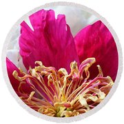 Peony Painterly Round Beach Towel