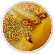 Pepper Reproduction Round Beach Towel