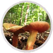 Peppery Bolete Round Beach Towel