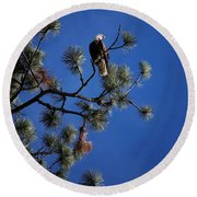 Perched II Round Beach Towel
