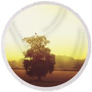 Perched On Top Round Beach Towel